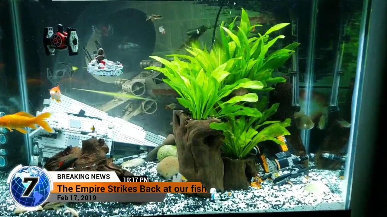 Lego Star Wars Fish Tank
