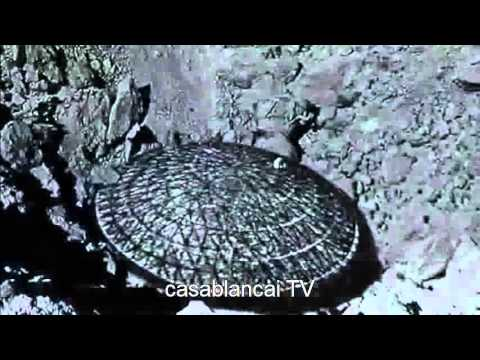 Preuves de civilisation extraterrestre sur la lune et la for Jardin et la lune