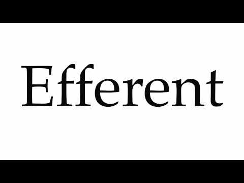 How to Pronounce Efferent