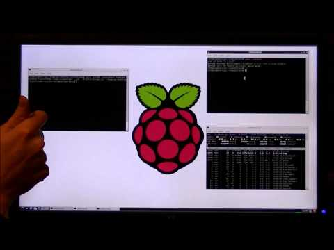 Natural Language Processing on the Raspberry Pi