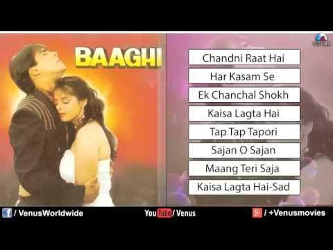 Baaghi Audio Jukebox   Salman Khan & Nagma 1990