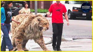 9 animais que voltaram da extinção!!