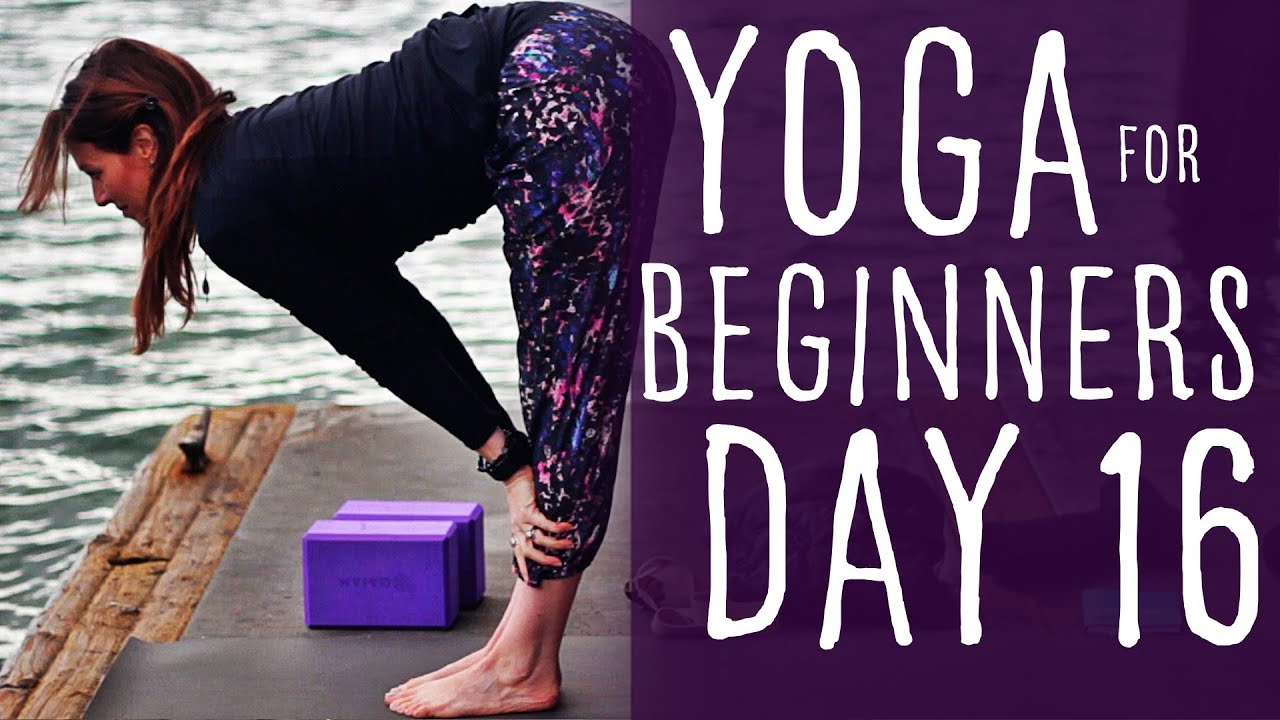 20 Minute Yoga For Beginners 30 Day Challenge Day 16 | Fightmaster Yoga  Videos