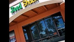 Vegan Restaurant Gilbert AZ- Seed Shack Reviews - Gilbert AZ 85234