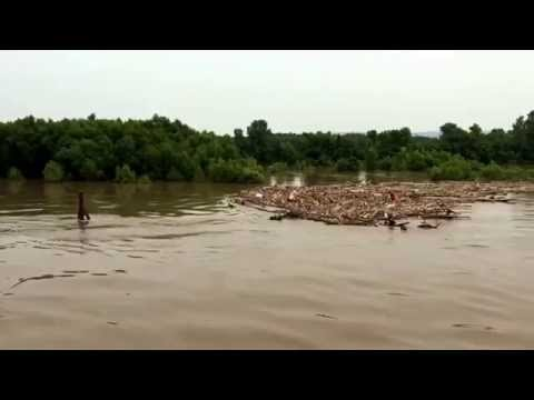 Flood on Upper Mississippi River