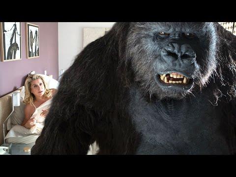 LE TOUT NOUVEAU TESTAMENT  streaming (2015)