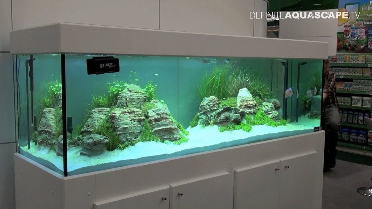 aquarium ideas from interzoo 2012 d hne verlag jbl pt
