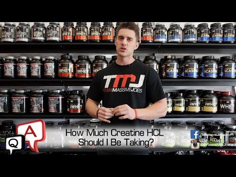 How much creatine hcl should i take per day
