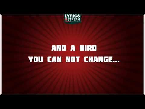 Free Bird - Lynyrd Skynyrd tribute - Lyrics
