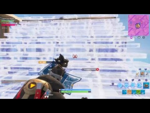 Fortnite First win with BFF