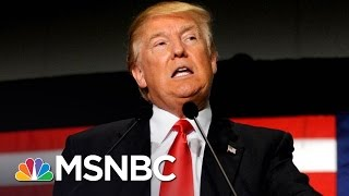 Judge Blames Trump Administration For Executive Order Failure | The Last Word | MSNBC