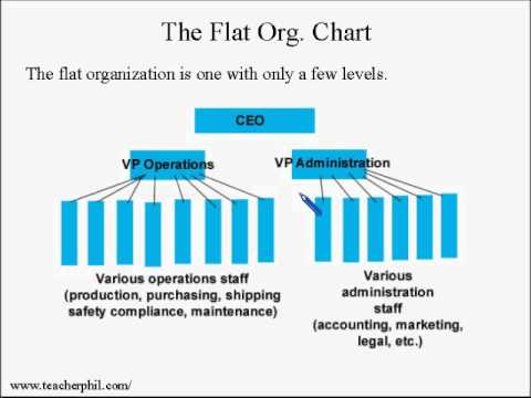 Business And Finance Lesson  Organizational Chart Tall Or Flat