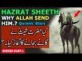 Qasas ul Ambiya Series┇Hazrat Shees علیہ السلام Aur Ganey Bajaney Ka Aghaz┇Story of Prophet Sheeth