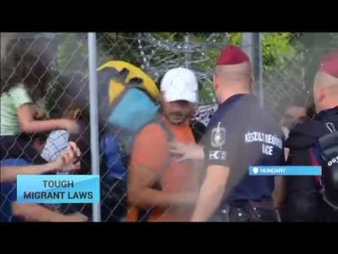 Hungary Border Clampdown: Budapest enforces tough migrant laws