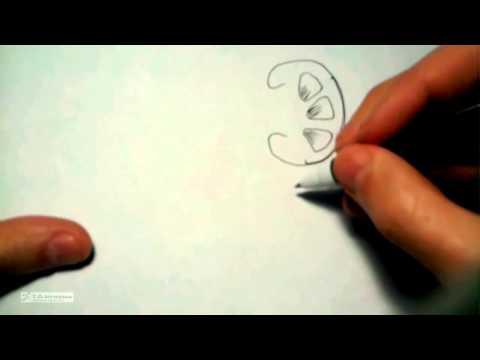 5.8. Rene anatomia normale tubuli contorti, ansa, collettore.