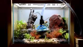 # خطوات عمل حوض متكامل لأسماك الزينة Aquarium fish Setup I