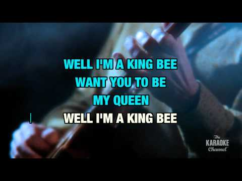 """I'm A King Bee in the Style of """"Slim Harpo"""" with lyrics (no lead vocal)"""