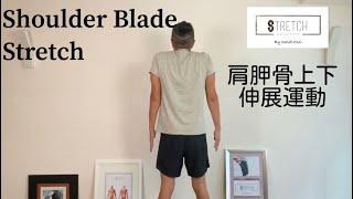 [一分鐘・鬆一鬆] - 肩胛骨上下伸展運動 [One Minute Stretching] - Shoulder Blade Stretch