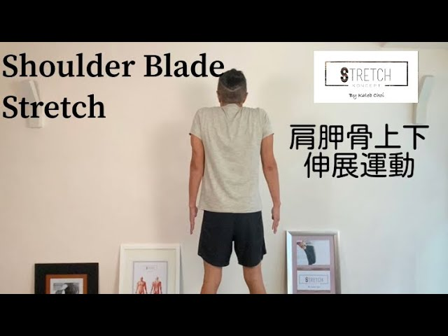 [一分鐘・鬆一鬆] - 肩胛骨上下伸展運動 [One Minute Stretching] - Shoulder Blade Stretch