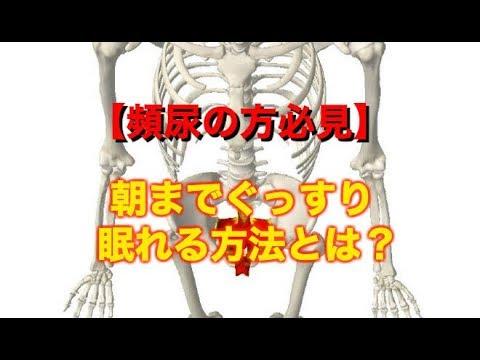 【ダイエットにも有効】骨盤底筋群の正しい鍛え方とは?(埼玉県さいたま市大宮区の整体院 喜流)