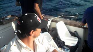 Video Pescaria Pargos Barco Micas download MP3, 3GP, MP4, WEBM, AVI, FLV Desember 2017