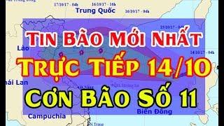 Tin Thời Sự Hôm nay (11h30 - 14/10/2017) : Bão Số 11 mạnh cấp 12  Giật Cấp 15 Tiến Vào Nước Ta