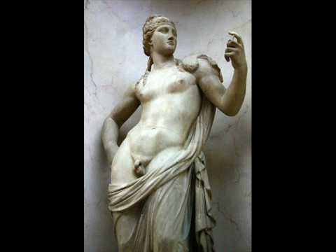 Intersex Chimaera--Chimeric Hermaphrodite