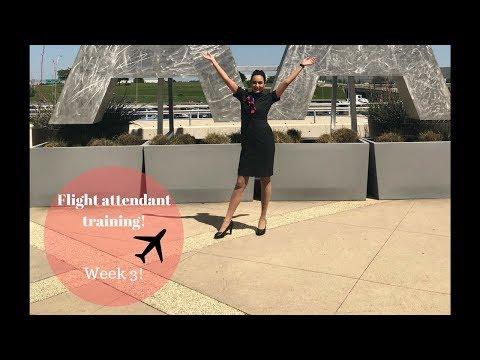 I'M MOVING TO.... | Flight Attendant Training | Week 3