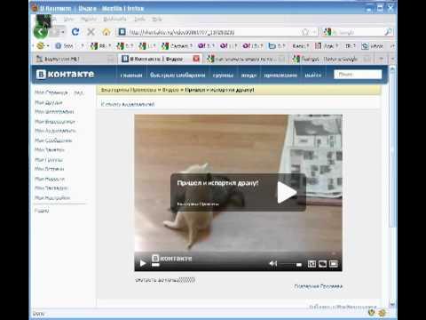 Скачиваем видео с любого сайта