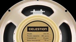 Celestion 25 watt Greenbacks Vs. The new Celestion 65 watt Creambacks