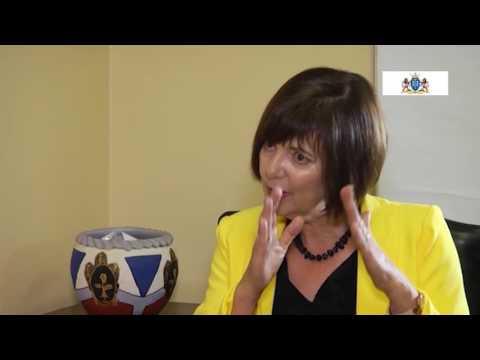 Finance MEC Barbara Creecy's plan to drive Gauteng forward