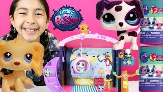Littlest Pet Shop VIP Style Suite + LPS Fashems| B2cutecupcakes