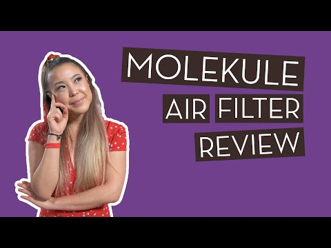Molekule Air Filter Review | Is It Worth It?!?}