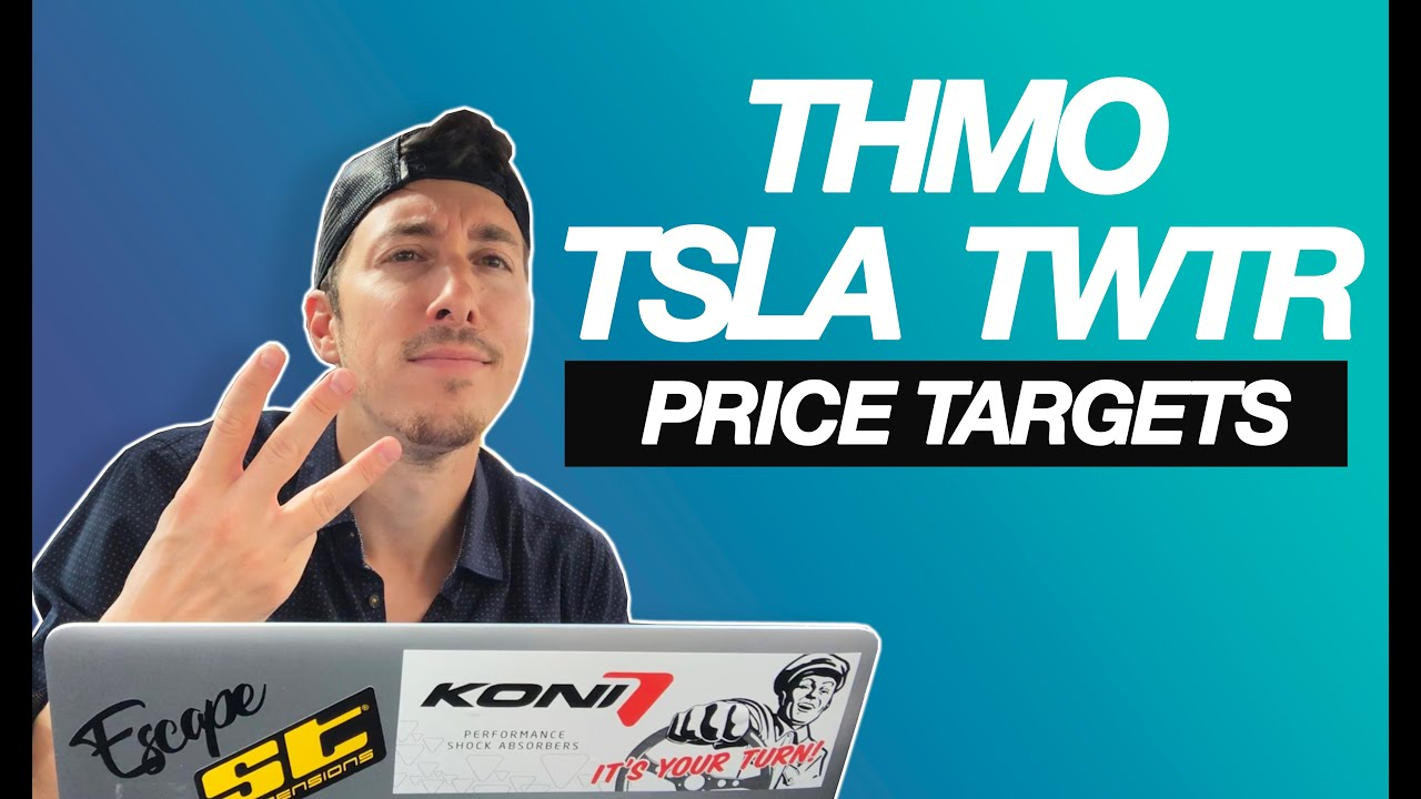 Tesla Motors (TSLA), Twitter (TWTR) - If You Invested $1000 In ...