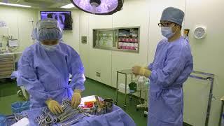 付属大磯病院看護職員の仕事風景(手術室編)