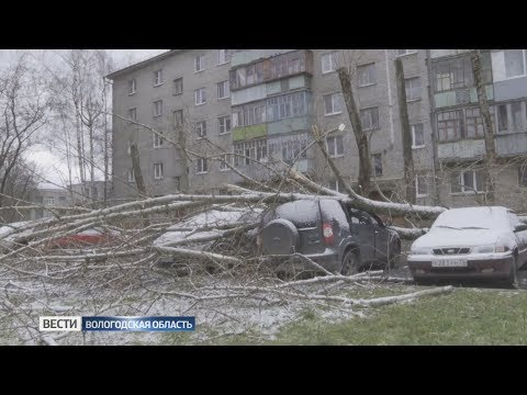 В Вологодской области устраняют последствия непогоды
