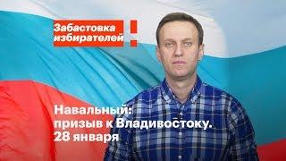 Владивосток: акция в поддержку забастовки избирателей 28 января в 14:00