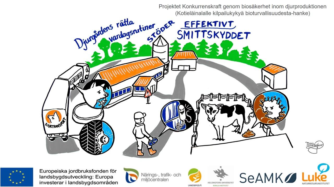 Smittskydd och förhållanden i ladugården nötboskap