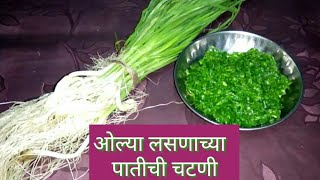 लसूण पातीची चटणी   lasun patichi chutney   Garlic chutney in marathi