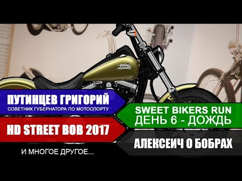 О бобрах, о мотостолице, мотоцикл Harley-Davidson Dyna Street bob