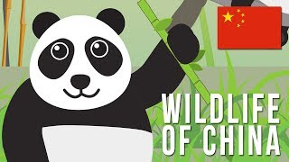 Wildlife of China