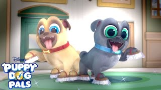 Clean Up Time | Music Video | Puppy Dog Pals | Disney Junior