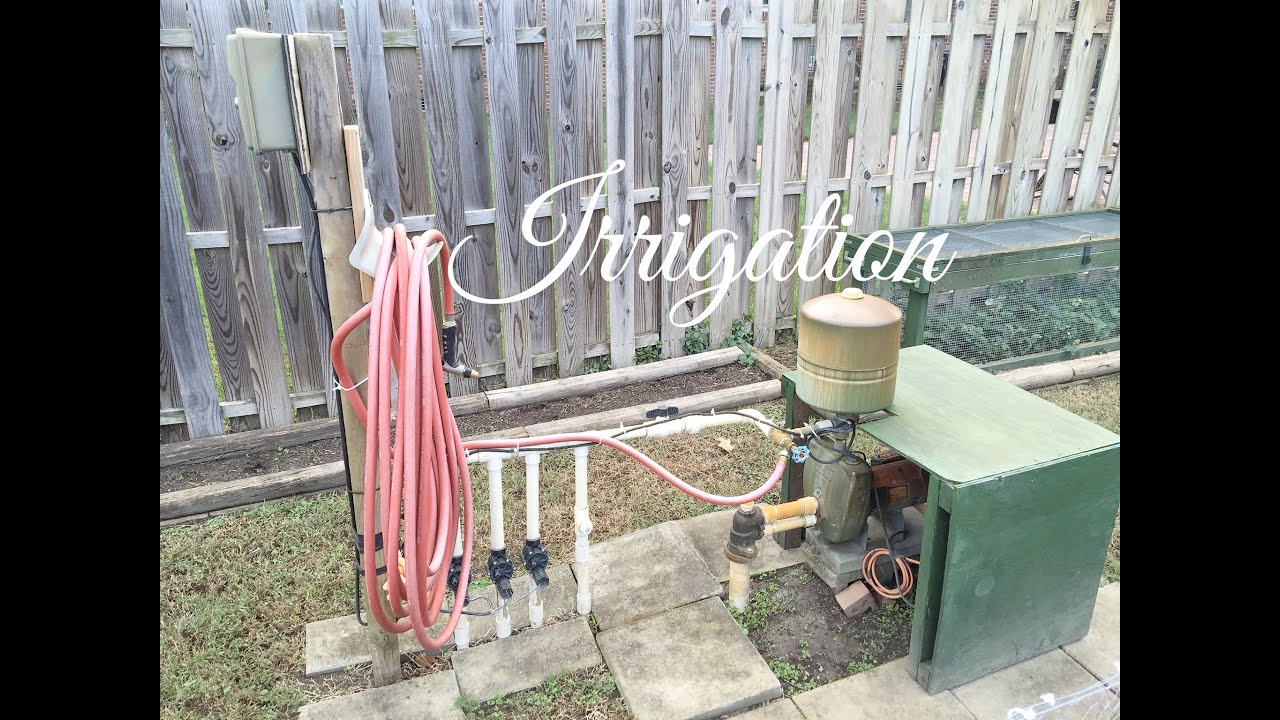 hd irrigation how long and often to water a vegetable garden