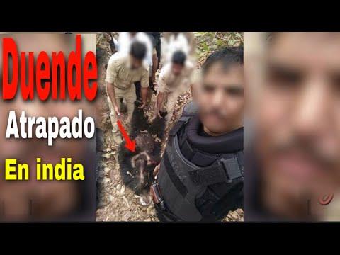 Download ATRAPAN A UN DUENDE REAL en la india ( nuevo video viral)