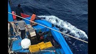 Ngư dân Việt Nam đang khốn khổ kêu trời vì 'bầy cào cào' Trung Quốc ở bãi Tư Chính