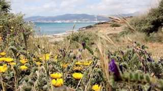 Mallorca Island, Spain - In Another Minute (Week 156)
