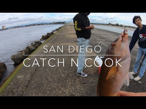 Catch And Cook! In Mission Bay
