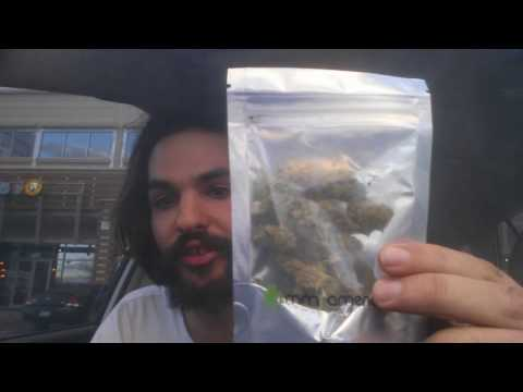 $20 Bag Of Weed In Colorado
