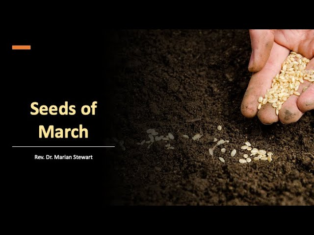 Seeds of March - March 7, 2021