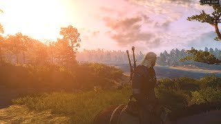 The Witcher 3 :Wild Hunt in 4k 60FPS Ultra Settings * GTX 1080 Ti *